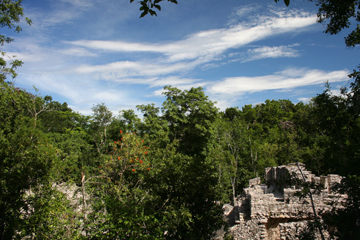 Looking out over one of the many ball courts at the Cobá ruins